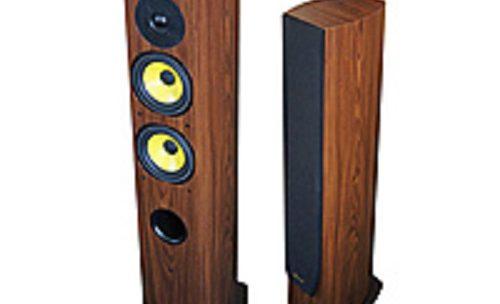 Акустические системы Davis Acoustics Havallon HD, обзор